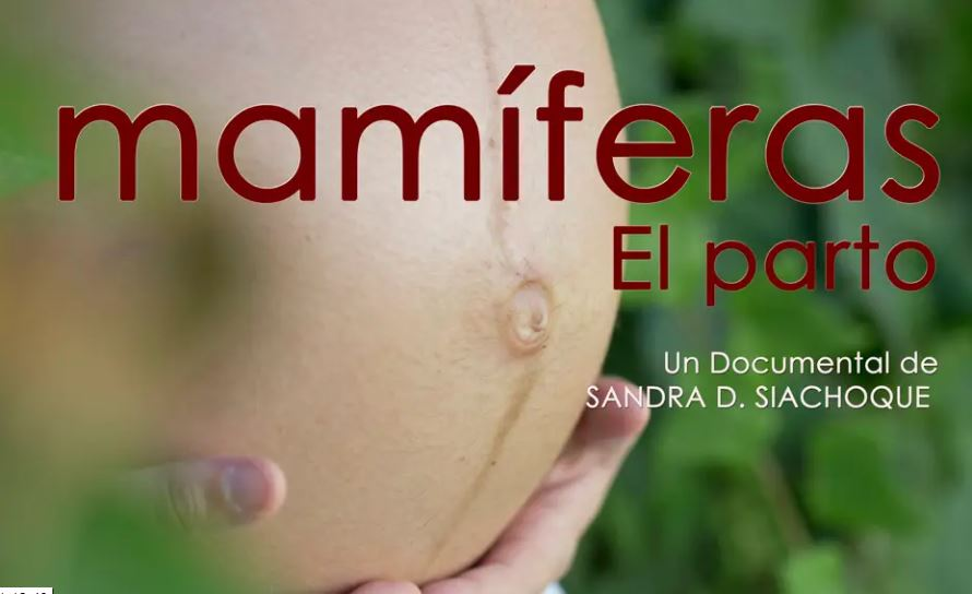 "Documental ""Mamíferes"""